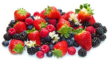 Antioxidants, free-radicals, cell damage and ageing