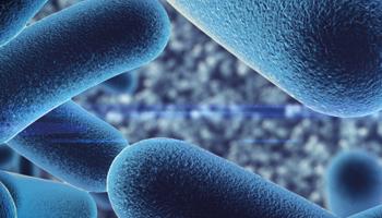 The probiotics debate
