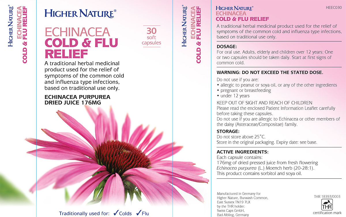 The benefits and use of Echinacea